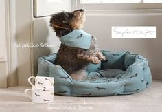 It's no secret we love dogs here at Sophie Allport, and in honour of our new Dachshunds collection, we've pulled together some Dachshund facts for you! Dachshund Facts, Dachshund Dog, Daschund, Dachshunds, Kwanzaa, Folding Shopping Bags, Cosy Bed, Wire Haired Dachshund, Dog Beds For Small Dogs