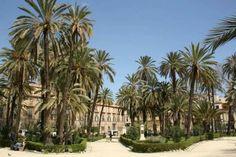 Palermo! Fast schon Afrika und unheimlich aufregend für Kinder, selbst ohne jede vorgefertigte Familien-Attraktion. #Palermo #Sizilien #Italien #Palmen #ReisenmitKindern