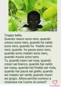 Italian Quotes, Common Sense, Holidays And Events, Funny Images, Vignettes, Quote Of The Day, Decir No, My Photos, Comedy