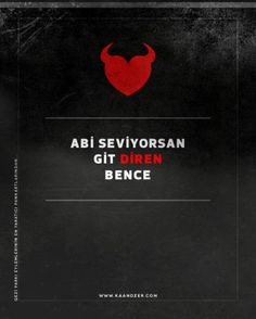 posters from Gezi Park protests