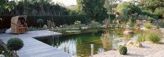 natural swimming pools and swimming ponds