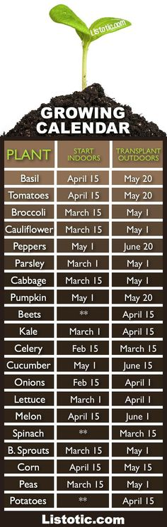 When to plant your vegetable garden.... Time to get started! #garden