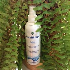 This Allergy Mist has hundreds of healthcare and cleaning applications and is very simple to use. Natural Air Freshener, Amazing Greens, Way Down, Working Area, Allergies, Mists, Health Care, Household, Cleaning