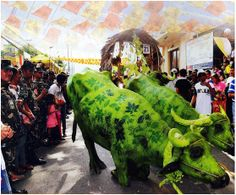 Carabao Festival in Pulilan, Philippines