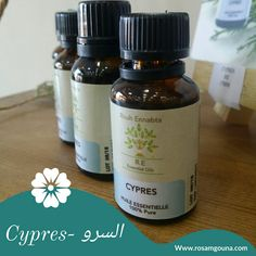 Cypress oil is often recommended in circulatory diseases or when there is congestion in the lower abdomen, this congestion may be related to the prostate, or the appearance of hemorrhoids. Cupressus Sempervirens, Cypress Oil, Les Allergies, Lower Abdomen, Circulation Sanguine, Menopause, Coffee Bottle, Fragrance, Pure Products