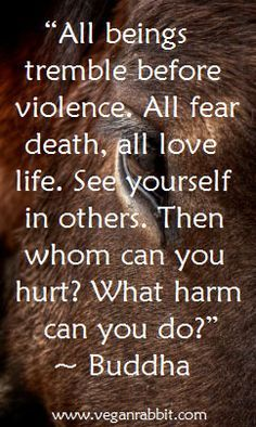 """The actual quote: """"All tremble at violence; all fear death. Putting oneself in the place of another, one should not kill nor cause another to kill. """" -The Buddha (Dhammapada v. 129)"""