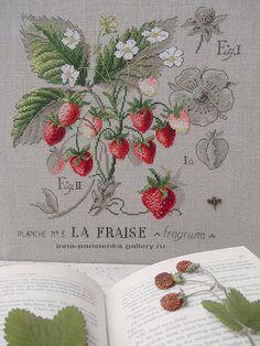 Gallery.ru / Фото #16 - Etudes botaniques - inna-parisienka