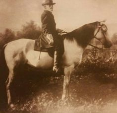 Gen. Lee and Traveler
