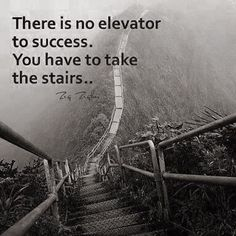 There is no elevator to success. You have to take the stairs. -Zig Ziglar