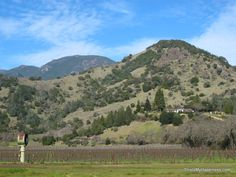 Napa Valley: Ideas for a Getaway from This Is My Happiness travel blog