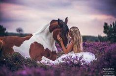 Q bella fotografía con éste caballo pinto