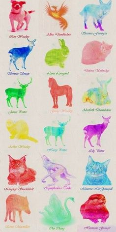 Patronus chart  - I think it's so interesting how both McGonagall and Umbridge have cats as their Patronuses. It's like their fight in Order of Phoenix was like the faceoff of the cat ladies.