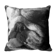 >>>Cheap Price Guarantee          Black and White English Bulldog Puppy Throw Pillow           Black and White English Bulldog Puppy Throw Pillow today price drop and special promotion. Get The best buyReview          Black and White English Bulldog Puppy Throw Pillow lowest price Fast Ship...Cleck Hot Deals >>> http://www.zazzle.com/black_and_white_english_bulldog_puppy_throw_pillow-189750470008081959?rf=238627982471231924&zbar=1&tc=terrest