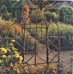 Bentwood Trellises for Your Garden: - - -  Any kind of wood works for trellises as long as it bends (except grape vines). The one above is long, slender cedar saplings. I also use birch, hickory, elm and others but my favorites are willow and cedar. Willow is easily renewable, cut it off and it grows back with more good trellis wood!