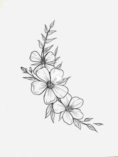 Tattoo Zeichnungen - Blume Tattoos Designs - Tattoo Zeichnungen - - beauty - The Effective Pictures We Offer You About unique tattoos creative A quality picture can tell you m - Compass Tattoo, Mini Tattoos, Small Tattoos, Small Flower Tattoos, Small Flower Drawings, Tattoo Zeichnungen, Flower Sketches, Easy Sketches, Flower Tattoo Designs