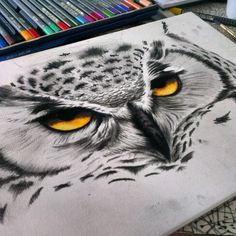Owl drawing in pencils and charcoal... @kerryjane84 on instagram