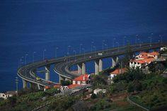 Madeira beauty