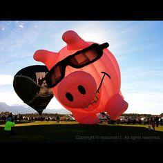 Mi globo aerostático favorito: POW piggy - Albuquerque International Balloon Fiesta 2012 #mobilephotography #balloonfiesta
