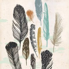 Feathers  print of original illustration by groundwork on Etsy, $20.00