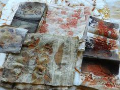 Образец эвкалипта ткань пакет 2