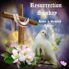 Resurrection Sunday, Have A Blessed Easter Jesus Paid It All, My Redeemer Lives, Resurrection Day, Old Rugged Cross, Christian Post, Easter Pictures, Tumblr Image, He Is Risen, Light Of Life