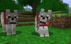 So u wait a second these dog are tamed woooooooooooo! that's cool so that need happys yesse that 1 is standing up and that 1 is sitting down Minecraft Wolf, Minecraft Houses, Pet Wolf, Picnic Blanket, Outdoor Blanket, Mc Skins, Minecraft Pictures, 11th Birthday, Play Online