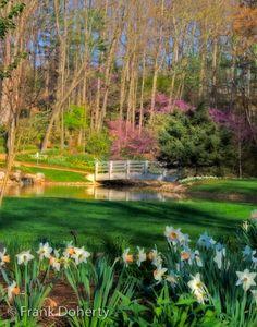 Photo taken by Frank Doherty at the Edith J. Carrier Arboretum at #JMU #Arboretum #EJCArboretum
