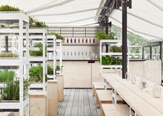 Form Us With Love creates waterfront beer garden for a Stockholm museum.