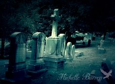 Photo by Michelle_Burress Hollywood Cemetery, Richard Williams, Richmond Virginia, Ancestry, History, Psychics, Historia