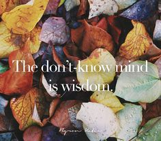 The don't-know mind is wisdom.  Another inspirational quote from Byron Katie to motivate you to be your best.  Do The Work today and change your life.