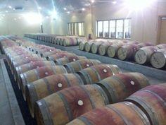 #xanadu barrel room  (#RNAWA13)