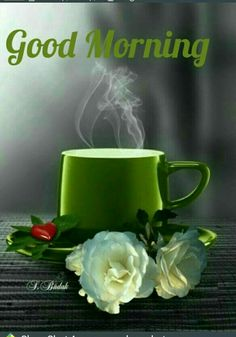Everybody keeps searching for good morning images with beautiful flowers wish their friends good morning. In today's post, we have brought you a great collection of good morning images with beautiful flowers. Good Morning Images Hd, Good Morning Gif, Good Morning Picture, Good Morning Messages, Good Morning Friends, Morning Pictures, Good Morning Wishes, Morning Pics, Morning Prayer Quotes
