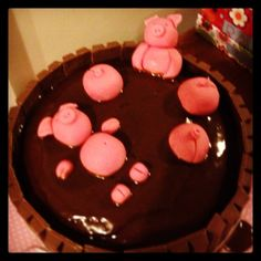 Pigs in mud cake!