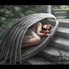 Angel - Anne Stokes :)