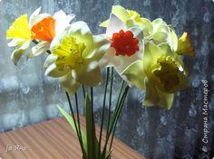 """Добрый вечер, уважаемые жители """"Страны""""! С весной вас! Тепла вам и солнечного, радостного настроения!...  Представляю вам сегодня нарциссы.  фото 5"""