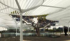 LES OMBRIÈRES, UN BÂTIMENT PAYSAGE | Herault Arnod Architecte