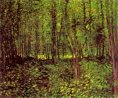 trees and undergrowth van gogh - Google Search