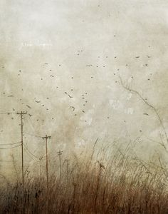We'll Talk About It Later by jamie heiden, via Flickr