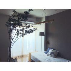 Hitomiさんの、無印良品,一人暮らし,IKEA,アセビ,1K,部屋全体,のお部屋写真