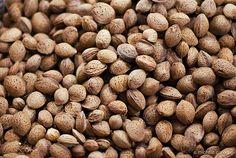 Almonds (Mandorle)