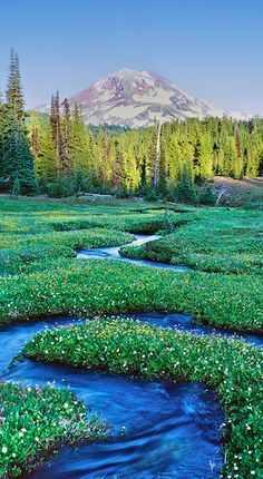 """Serpentine Stream"" (Mt. Jefferson in background) ~ Three Sisters Wilderness ~ central Oregon • Mike Putnam"