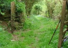 Smugglers Way - Boscastle to Looe c Frank Squibb