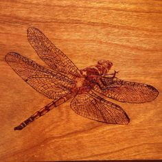 Here is a photo of dragonfly that I burned onto the top of a table that I recently built. Table is made of cherry.