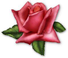 Grande Rose Elemento Transparente
