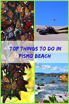 Top 10 Things to do in Pismo Beach - 52 Perfect Days Pismo Beach California, California Travel, Us Destinations, Family Vacation Destinations, Morro Bay State Park, Avila Beach, San Luis Obispo County
