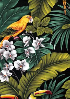 Mamo - Barkcloth Hawaii - Timeless Hawaiian Fabrics For your Home& Body Parrots and Macaws with orchid flowers, cotton apparel fabric. Tropical Design, Tropical Pattern, Tropical Art, Tropical Plants, Tropical Forest, L Wallpaper, Pattern Wallpaper, Botanical Illustration, Illustration Art