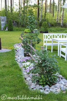 piha,puutarha,kesäkukat,kukkapenkki,kivet Potager Garden, Garden Edging, Garden Trellis, Terrace Garden, Outside Plants, Outdoor Plants, Outdoor Gardens, Landscaping With Rocks, Backyard Landscaping