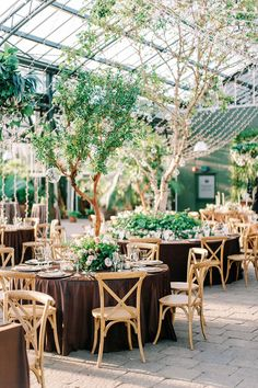 We have a major crush on this enchanted forest wedding that took place in a twinkle lit greenhouse. With a wooden stump seating chart, walnut velvet linens and a 92 year old flower grandma, we cannot wait for you to glimpse this magical woodland wedding day! Forest Wedding Reception, Rooftop Wedding, Wedding Reception Decorations, Wedding Tables, Wedding Vendors, Magical Forest, Enchanted Forest Wedding, Woodland Wedding, Reception Entrance