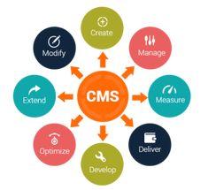 Content Management Mohali