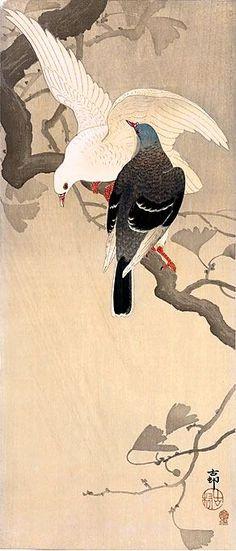 """小原古邨 Ohara Koson """"Pigeons on Ginkgo Branch"""" Japanese Painting, Chinese Painting, Chinese Art, Ohara Koson, Art Chinois, Art Asiatique, Art Japonais, Bird Illustration, Japanese Prints"""